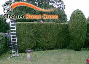 Hedge Maintenance Brent Cross