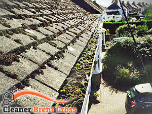 gutter-cleaning-brent-cross